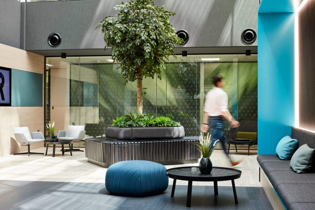 Collaborative workspace with bench seating, large tree bench seating area and a worker walking through the space.